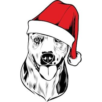 Perro catahoula con gorro de papá noel para navidad
