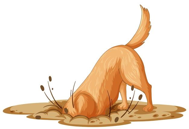 Perro cavando tierra sobre fondo blanco.