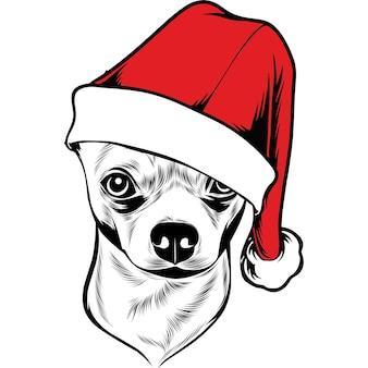Perro chihuahua con gorro de papá noel para navidad