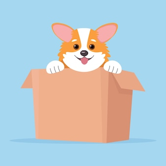 Perro corgi. cachorro en caja, linda ilustración de estilo plano