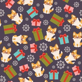 Perro corgi galés con cajas de regalo. sin patrón o papel tapiz.