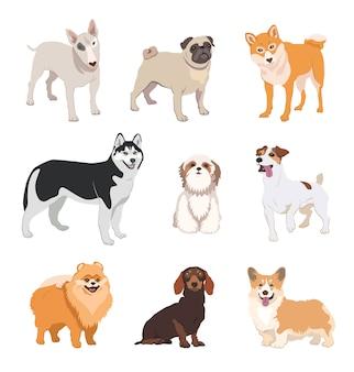 Perro de dibujos animados cría colección de iconos plana