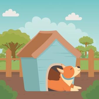 Perro de dibujos animados dentro de casa de madera.