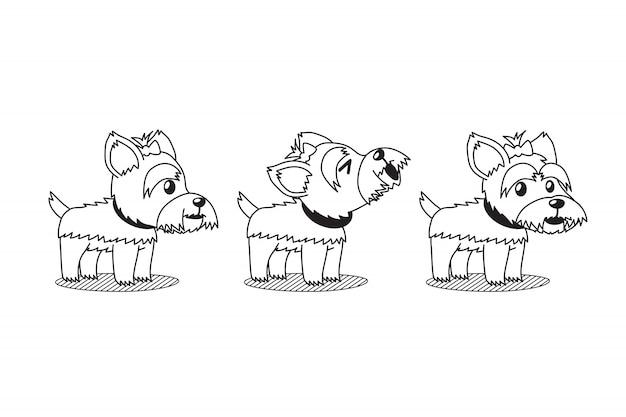 Perro de dibujos animados lindo yorkshire terrier perro plantea