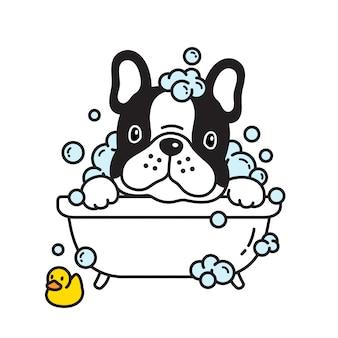 Perro francés bulldog baño ducha goma pato dibujos animados