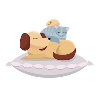 Perro, gato y hámster duermen cómodamente. dulces sueños de amigos peludos.