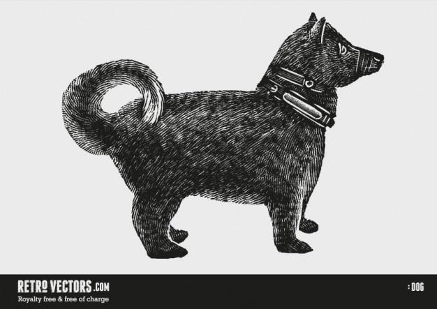 Perro grabado en madera