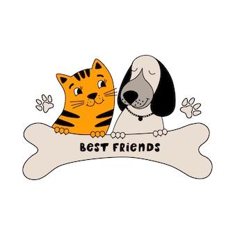 Perro gracioso y gato lindo mejores amigos