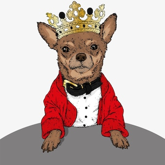 Perro hipster en una corona de oro