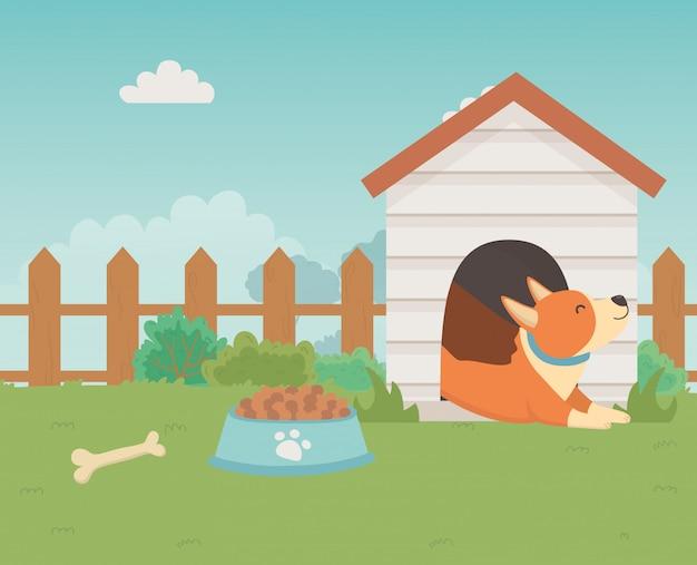 Perro ilustrador de vectores de diseño de dibujos animados
