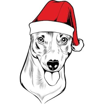 Perro jack russel terrier con gorro de papá noel para navidad