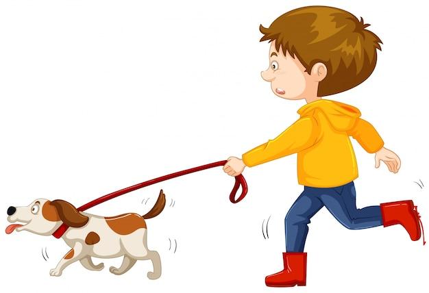Perro pequeño niño caminando
