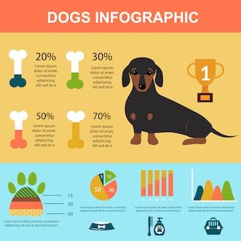 Perro del perro basset que juega el sistema infographic de los símbolos de la presentación del vector.