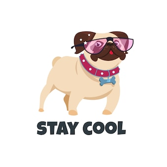 Perro pug con gafas. gracioso cachorro amigo.