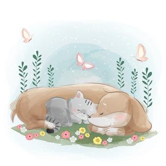 Un perro salchicha durmiendo con el gatito