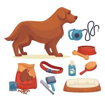 Perros conjunto de accesorios para perros.