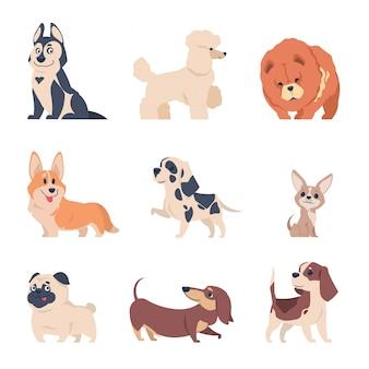 Perros de dibujos animados retriever labrador husky cachorros, conjunto de mascotas felices planas, animales domésticos aislados en blanco