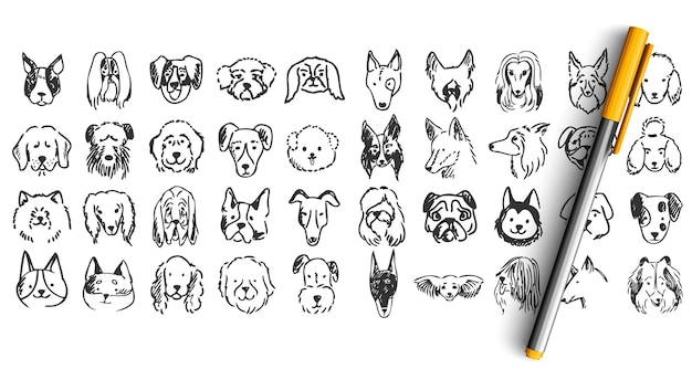 Perros doodle conjunto. colección de bocetos de dibujo de tinta lápiz dibujados a mano. animales domesticos cachorros dolmatins chihuahua pug spitz mascotas bozales.