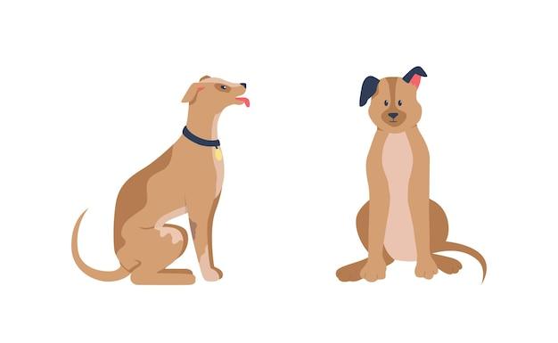 Perros felices sentados en color plano conjunto de caracteres detallados. perro amigable sentado. animal obediente. dibujos animados aislados de cuidado de mascotas