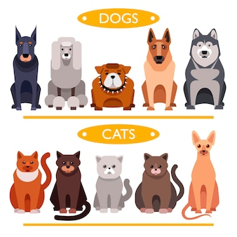 Perros y gatos. conjunto de vectores de dibujos animados