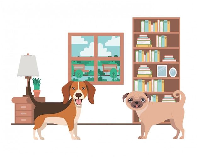 Perros lindos y adorables en la sala de estar