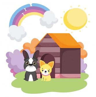 Perros sentados frente a la casa de madera paisaje mascotas