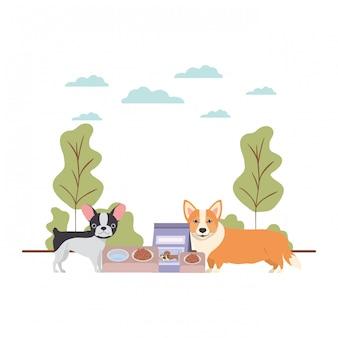 Perros con tazón y comida para mascotas en el paisaje