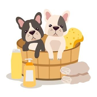 El personaje de bulldog francés lindo sentado en el barril con esponja, champú, jabón y toalla en estilo plano. ilusión sobre la preparación del perro.