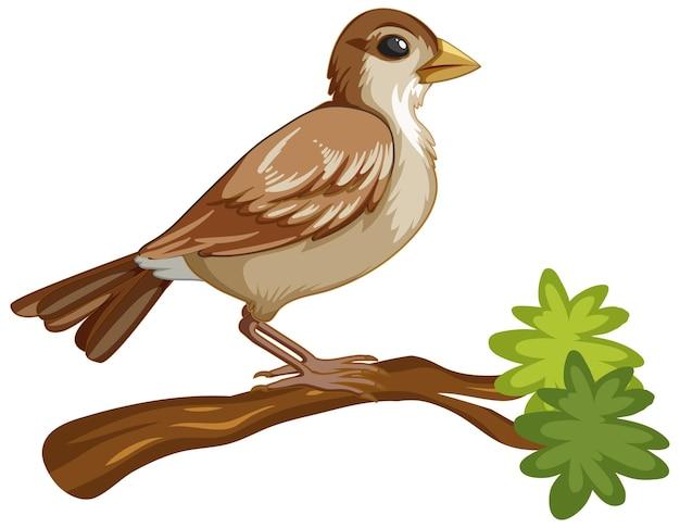 Personaje de dibujos animados de animales de un pájaro en blanco