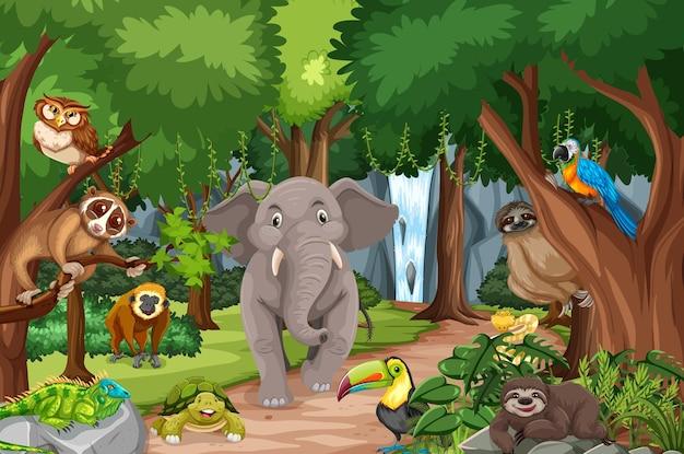 Personaje de dibujos animados de animales salvajes en la escena del bosque