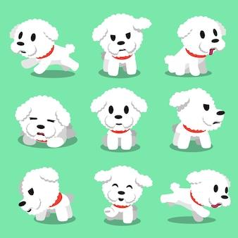 Personaje de dibujos animados bichon frise perro plantea
