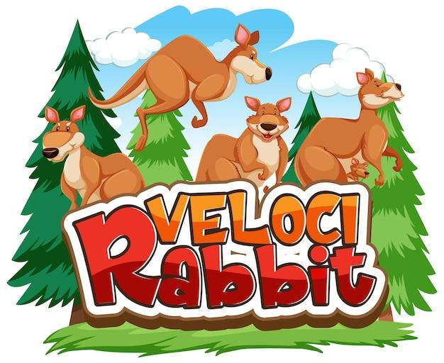 Personaje de dibujos animados de canguro con banner de fuente velocirabbit aislado