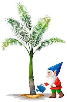Personaje de dibujos animados de gnomo riego palmera sobre fondo blanco