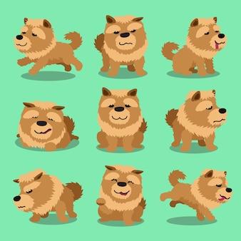 Personaje de dibujos animados perro chow chow plantea