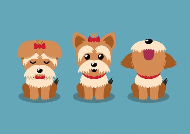 Personaje de dibujos animados perro yorkshire terrier plantea conjunto