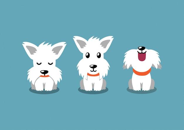 Personaje de dibujos animados terrier escocés blanco poses de perro