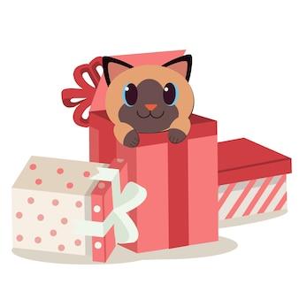 Personaje de lindo gato en la caja de regalo.