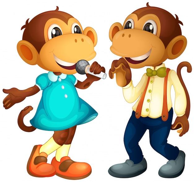 Personaje de mono macho y hembra.
