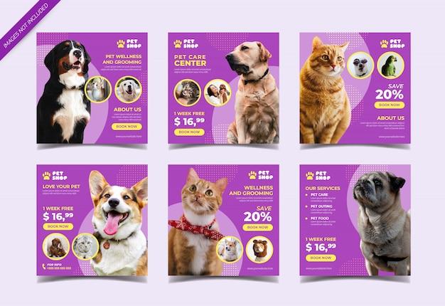 Pet shop instagram post collection