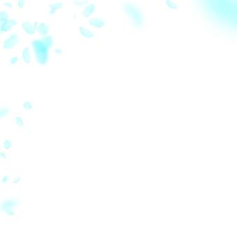Pétalos de flores de color turquesa cayendo. esquina de flores románticas imaginativas. pétalo volador sobre fondo cuadrado blanco. amor, concepto de romance. invitación de boda admirable.