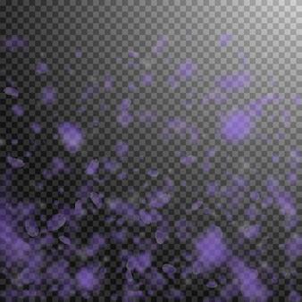 Pétalos de flores violetas cayendo.