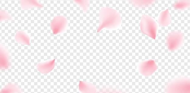 Pétalos de sakura rosa cayendo vector de flor fondo aislado. pétalos de flor de sakura flor romántica