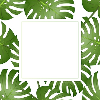 Philodendron monstera leaf banner card