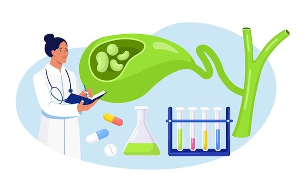 Piedras en la vesícula biliar. médico científico gastroenterólogo examinar la vesícula biliar. los médicos tratan los cálculos biliares. problemas de discinesia biliar. investigación de laboratorio de colecistitis