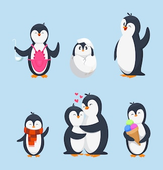 Pinguins divertidos en diferentes poses de acción. mascotas de dibujos animados aislar