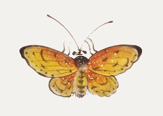Pintura china de una mariposa amarilla.