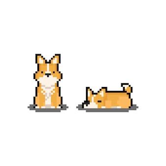 Pixel art personajes de dibujos animados corgi.