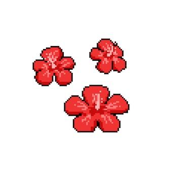 Pixel art rojo chaba flor icono diseño conjunto.