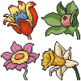 Pixel art set aislado flor extraña