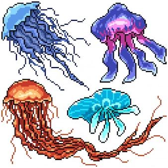 Pixel art set aislado medusas peligrosas